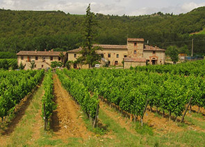 Private Chianti Tour