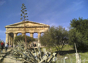 Palermo Walking Tour and Segesta
