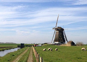 Private Full-Day Customizable Tour of Holland from Amsterdam