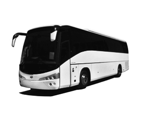 Private Transfer 49pax